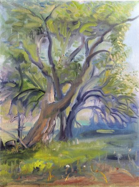 Miller Lopez Trees