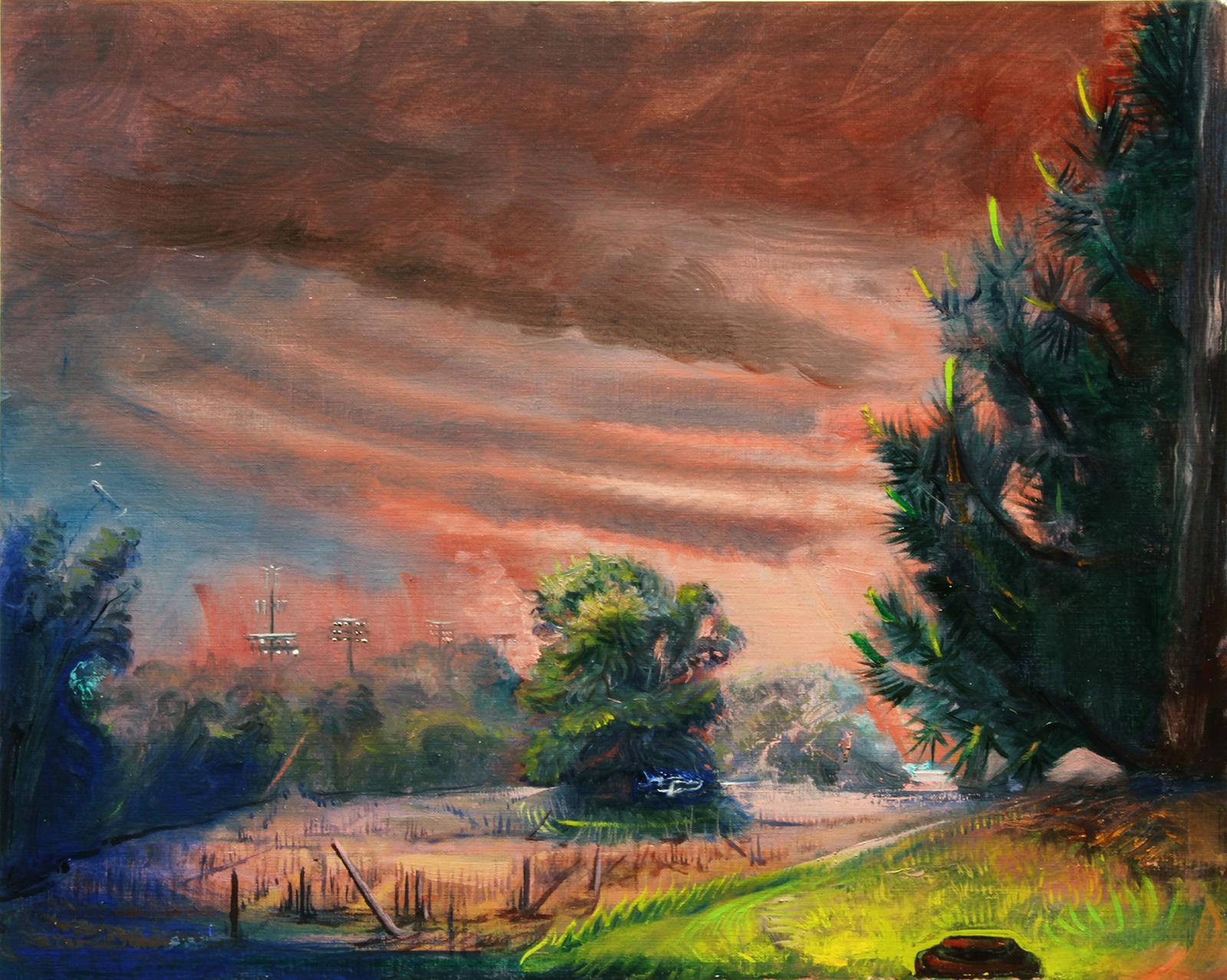 Miller Lopez Pine in Storm